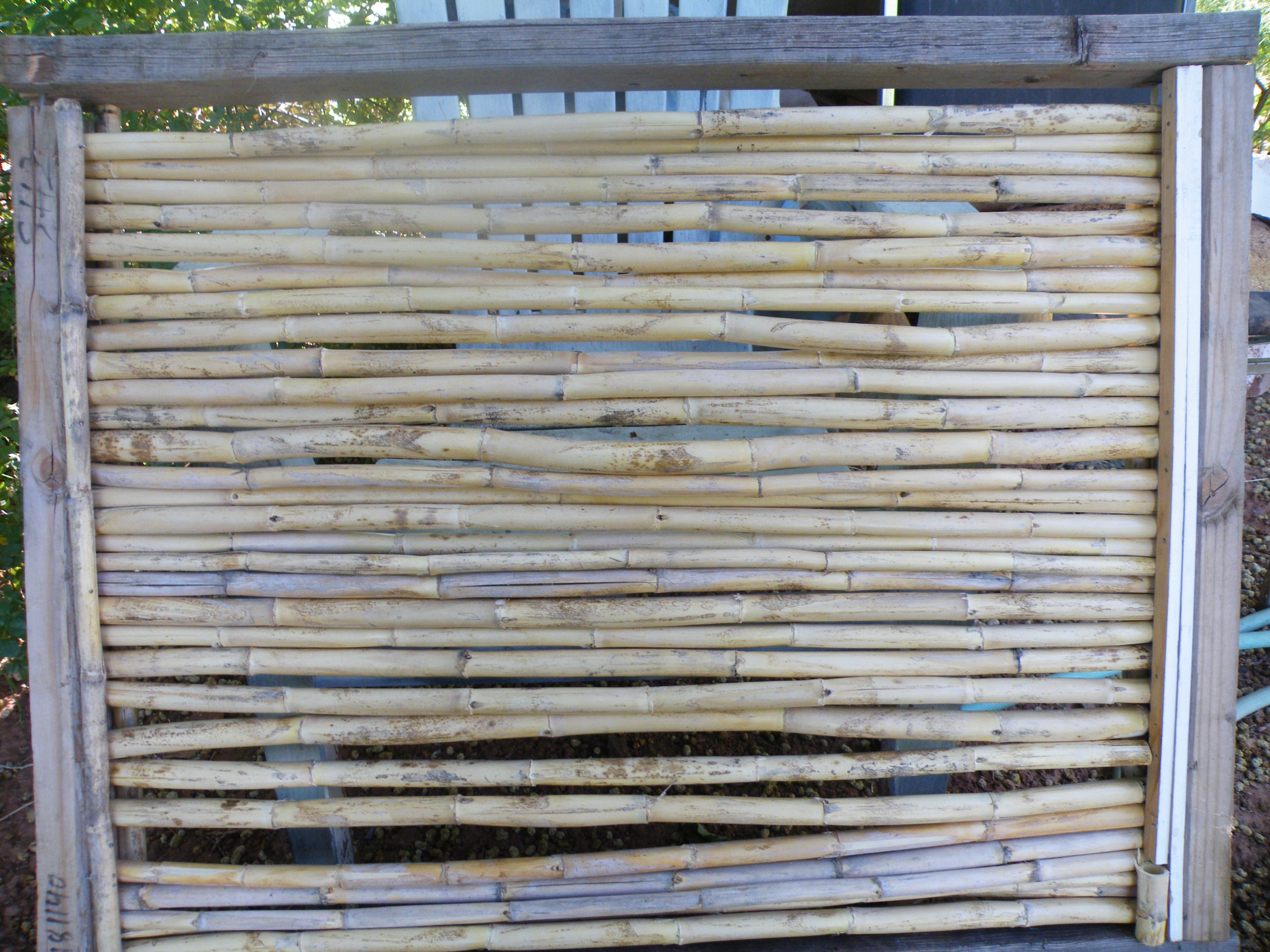 6 27 2018 bamboo panel 001